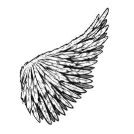 122 raster vector wings go media creativity at work rh gomedia com free vector wings 3 free vector wings clipart