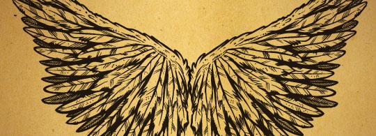 122 Raster & Vector Wings