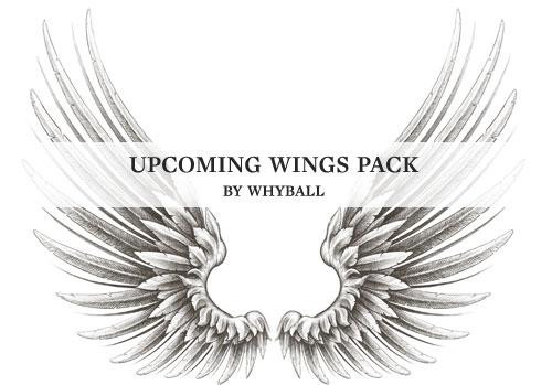 Whyball Wings pack coming up