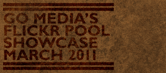 Go Media's Flickr pool showcase – March 2011