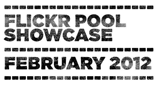 SAoS - GoMediaZine - Go Media's Flickr pool showcase - February 2012 - Header