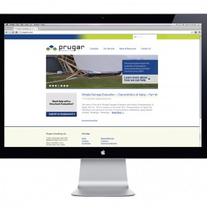 Prugar Consulting Website Design - Homepage