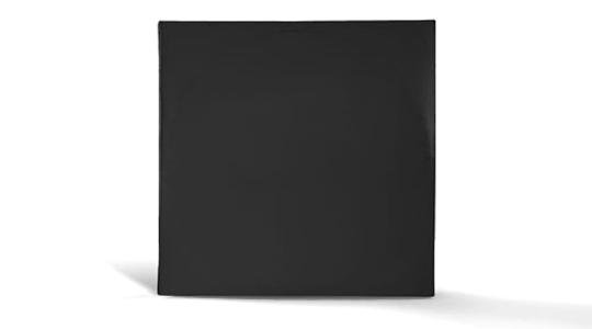 Vinyl Record Sleeve - 12 Inch