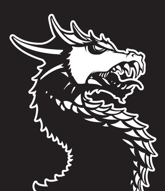 sakai_dragon004