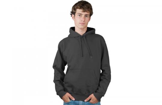 Men's Pullover Hoodie Modelshot