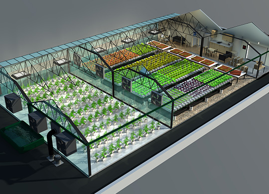 Urban Harvest tapped Killer Infographics to design an interactive concept for a rooftop greenhouse.