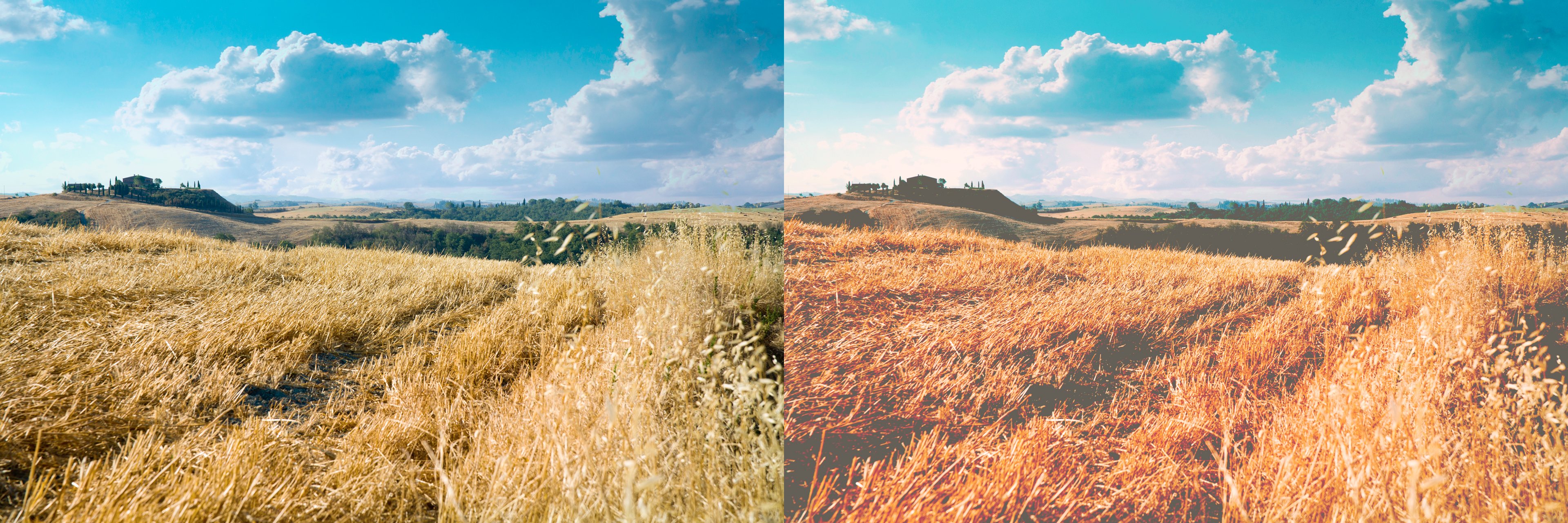 VSCO Cam tutorial - Side by side comparison
