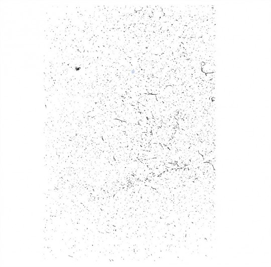 livetrace_livetrace-texture