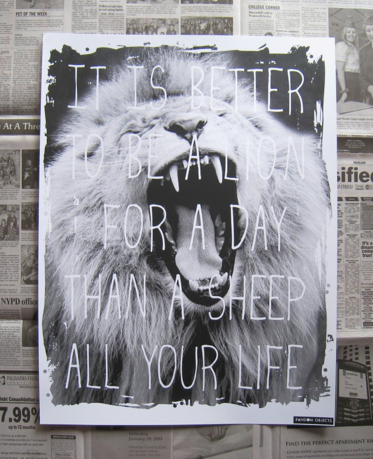 Lion for a Day Poster | Random Objects