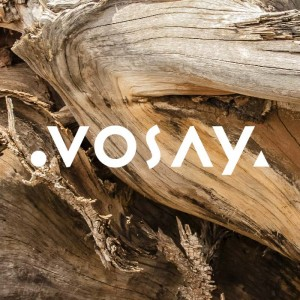 Vosay-FeaturedImage-alt