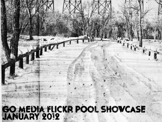 The January 2012 Go Media Flickr Pool Showcase - header