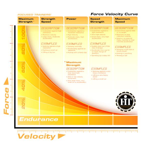 Alternate FIT FVC infographic