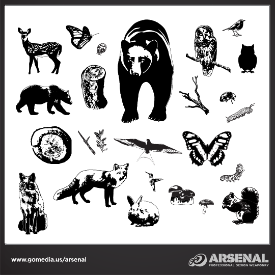 Woodland Creatures Vector Pack