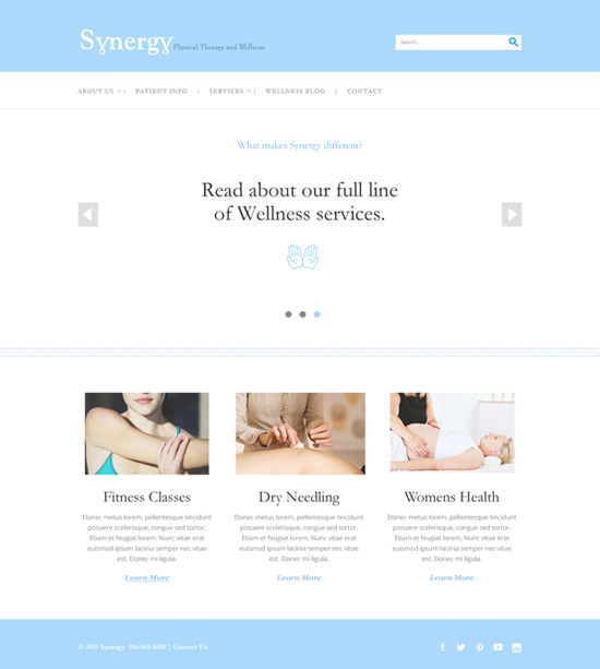 Synergy Physical Therapy Website Design - Homepage 1