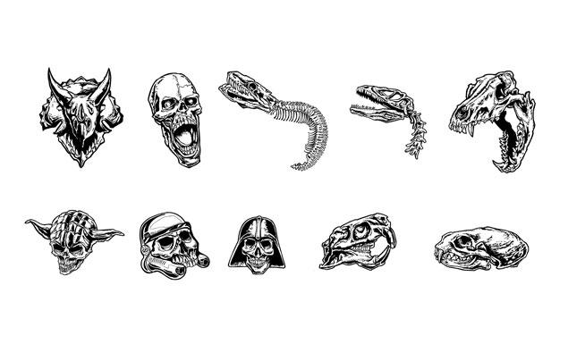Steve Knerem Skulls