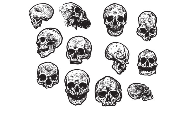 Jeff Finley Skulls