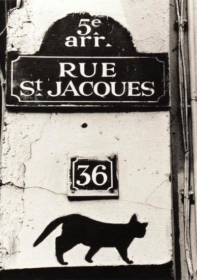 rue st jacques