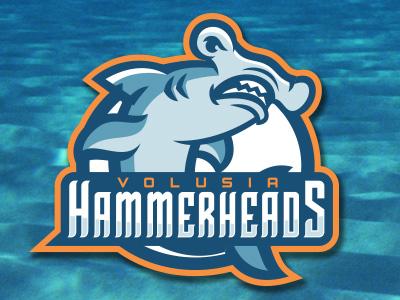 Hammerheads by Josh Ash