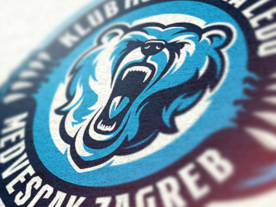 Hockey Team Logo by Tin Bacic