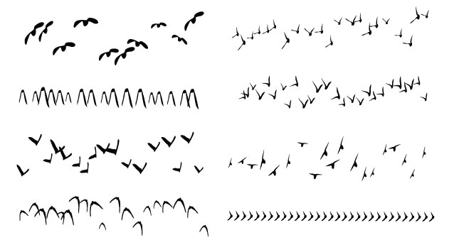 Birds Scatter Brush Freebie