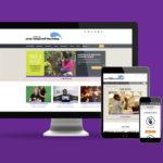 Portfolio Spotlight: Center for Arts-Inspired Learning Website